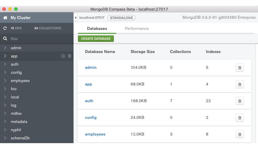 MongoDB Compass user interface